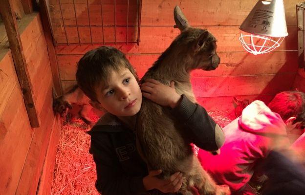 Un accueil hors du commun pour les enfants et les parents à la chèvrerie de Valbonne