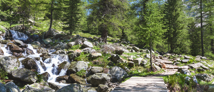 Amoureux De La Nature - Camping Nature